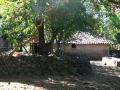 Farm House where Sabas Flores grew up #1